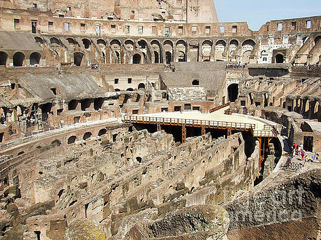 Colosseum Rome Italy by Edward Fielding