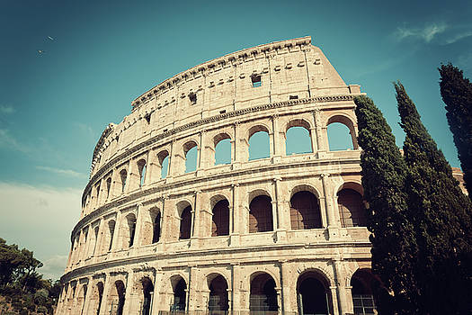 Colosseum with cypress trees in vintage tone by Natalia Macheda