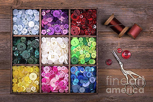 Colourful buttons with needle, thread and scissors by Jane Rix