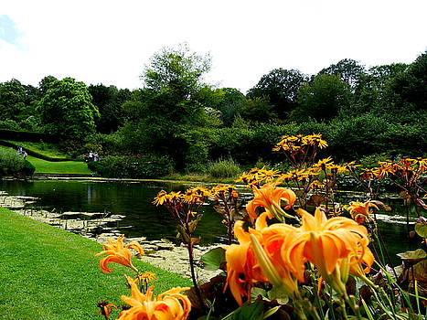 Colourful garden at Dyram Park by Fred Whalley