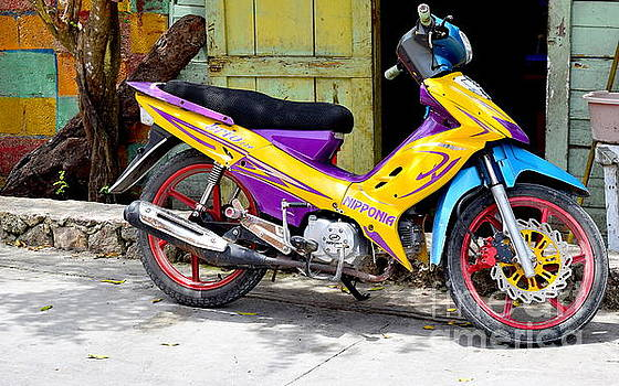 Colourful motorbike by Inessa Williams