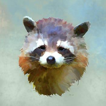 Bamalam  Photography - Colourful Raccoon