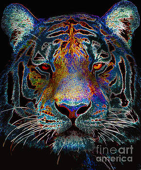 Colourful Tiger by Tylir Wisdom