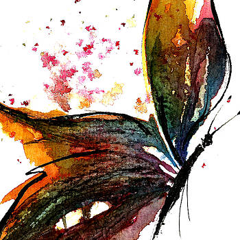 Colourful Wings by Garima Srivastava
