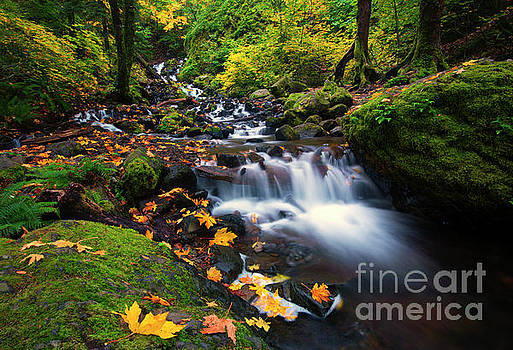 Columbia Gorge Autumn by Mike Dawson