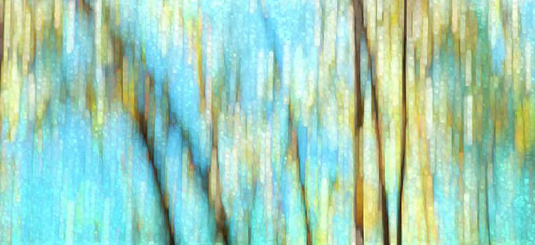 Columbia River Abstract by Theresa Tahara