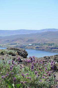 Columbia River Scenic Blooms #1 by Carol Eliassen