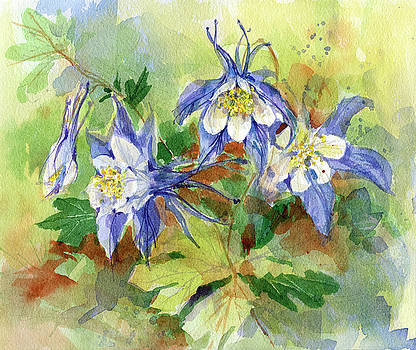 Columbine by Garden Gate