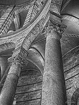 Diana Haronis - Columns Black and White