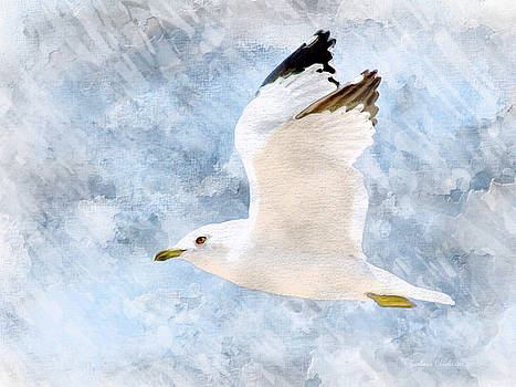 Come Fly With Me by Barbara Chichester