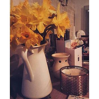 Come On #spring #daffodils by Natalie Anne