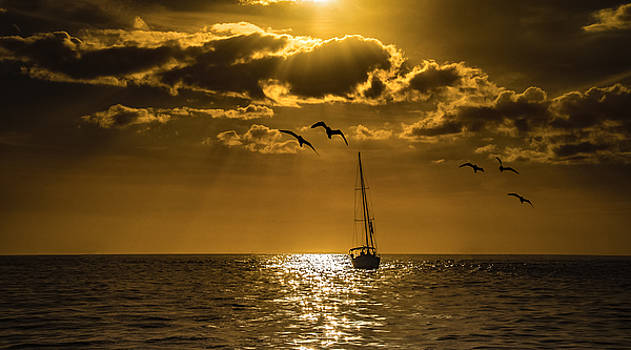 Come Sail Away by Phillip Burrow