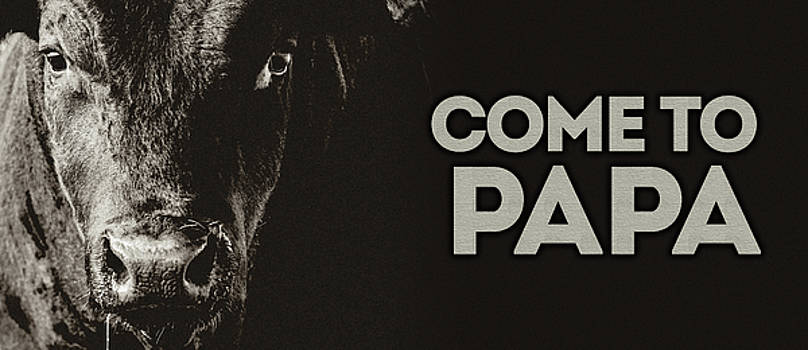 Come To Papa by Debi Bishop