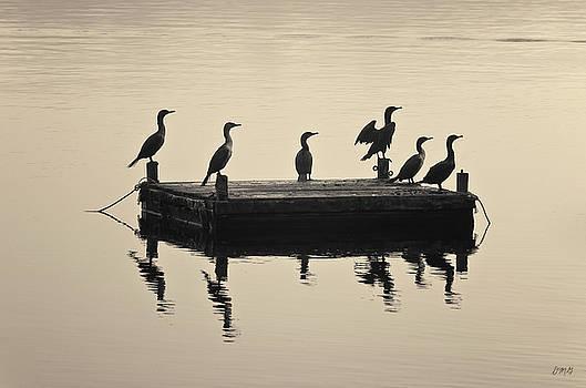 David Gordon - Comerants and Dock Taunton River