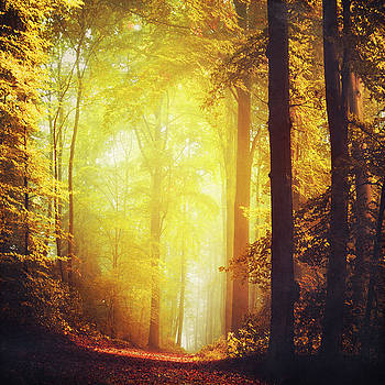 Coming of Fall by Dirk Wuestenhagen