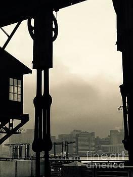 Coming Storm by Mioara Andritoiu
