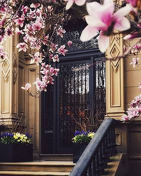 Comm Ave Spring Door Portrait by Brian McWilliams