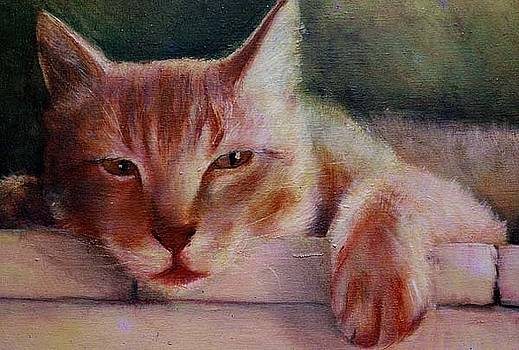 Commission Pet Portrait in oil paint by Gayle Bell