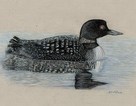 Common Loon by Cynthia  Lanka