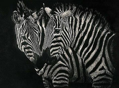 Barbara Keith - Common Zebra