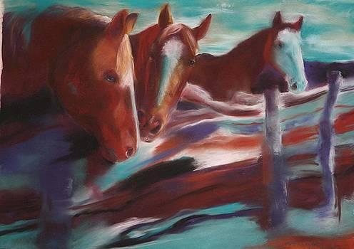 Companions by Deborah Voyda Rogers