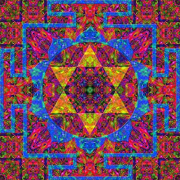 Compassion Mandala 5 by Julian Venter