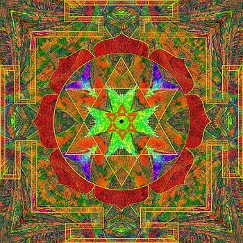 Compassion Mandala 6 by Julian Venter