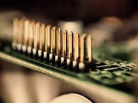 Computer board Gold Pins by Gary De Capua