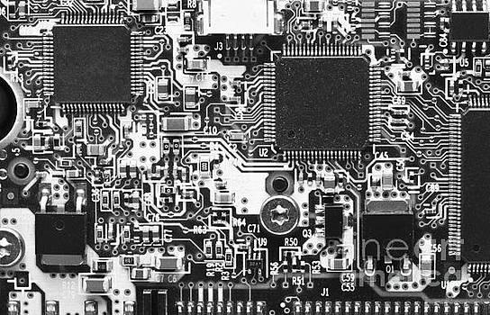 Computer Circuit Board Black And White Print By Jon Boyes