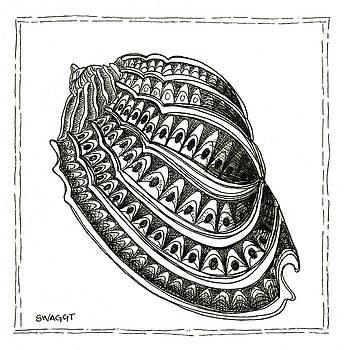 Conch Shell 1 by Stephanie Troxell