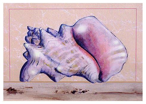 Thomas Lupari - Conch Shell
