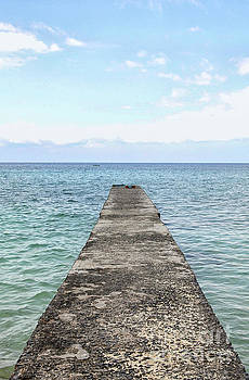 Concrete jetty by Patricia Hofmeester