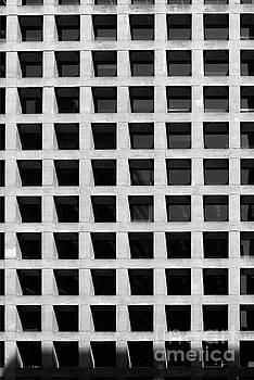 Concrete Nest  by Fei A