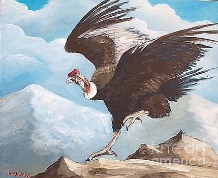 Condor by Jean Pierre Bergoeing