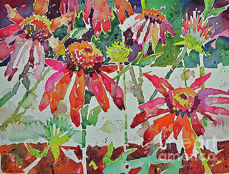 Cone Flowers and  Three Bands by Roger Parent