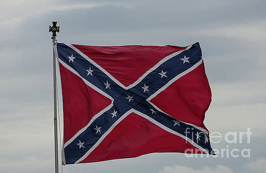 Dale Powell - Confederate Battle Flag