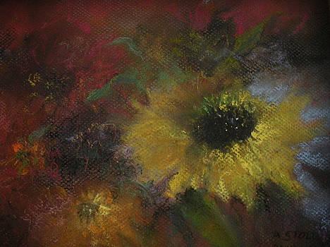Confetti by Anita Stoll