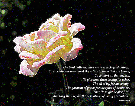 Confetti Rose with Bible Verse by Lynn Harrison
