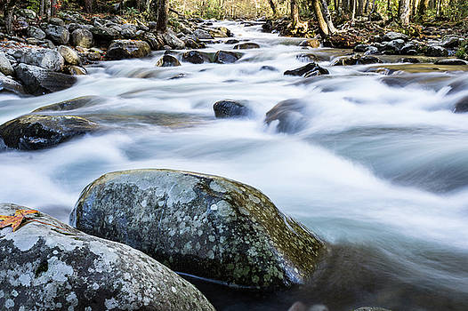 Confluence of branches of a river in the Great Smoky Mountains by Natalie Schorr