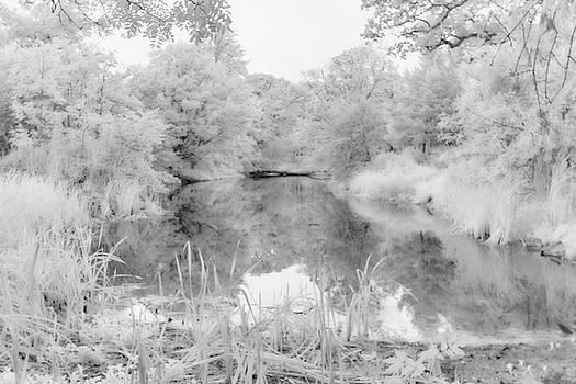 Conishead Lake by Keith Elliott