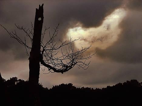 Conjuring by GJ Blackman