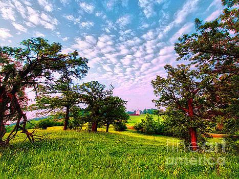 Conley Road Meadow, Oaks, Barn, Spring  by Tom Jelen