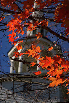 Connecticut fall foliage in view by Jeff Folger