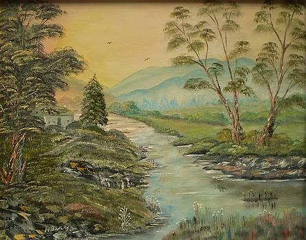 Connemara River by Noel Barry