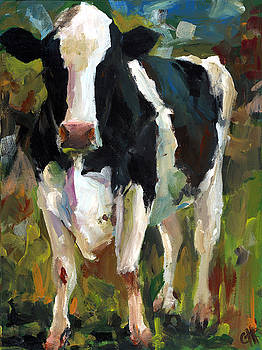 Connie the Cow by Cari Humphry