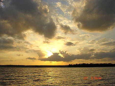 Conroe Sunset by Martha Roehrick
