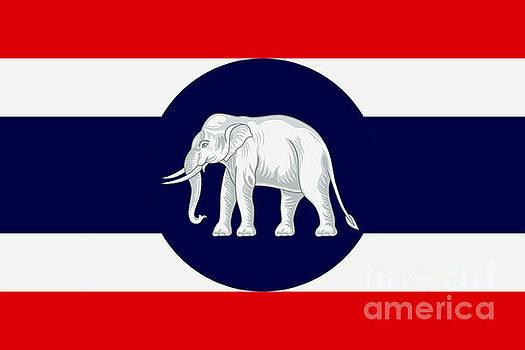 Consular Flag of Thailand by Ian Gledhill