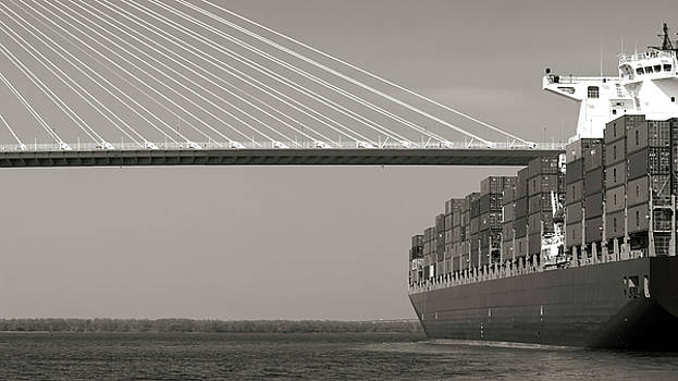 Container Ship Under Cooper River Bridge by Dustin K Ryan