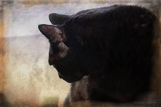 Contemplation, Pensive Black Cat Portrait by Melissa Bittinger