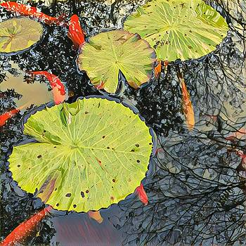 Contemplation Pond by Lorenka Campos